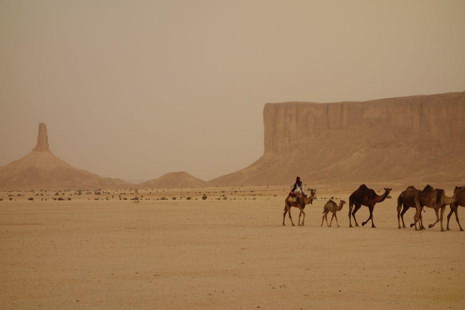 se podra viajar a arabia saudi en 2020 y 2021