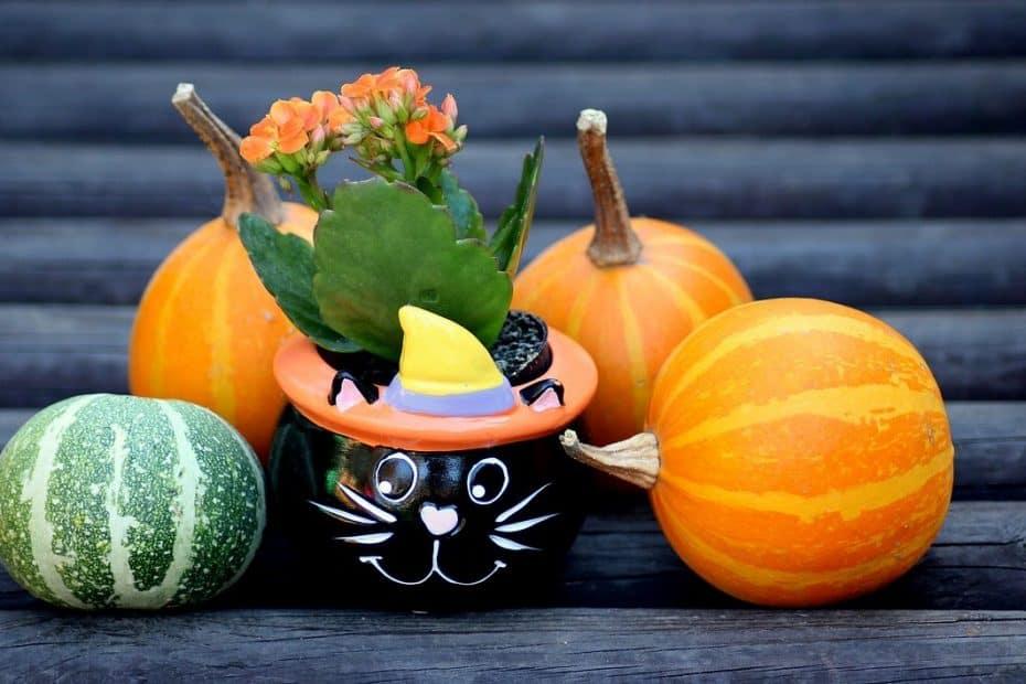 como se celebra halloween en otros paises del mundo