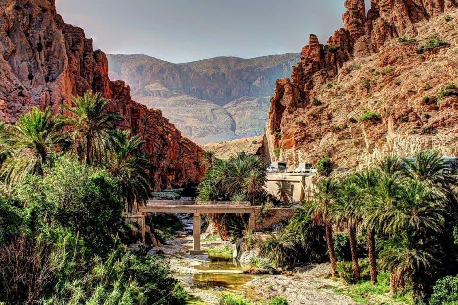 se podra viajar a argelia en 2021