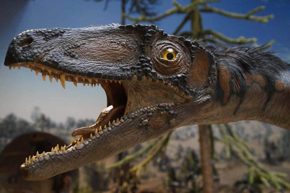 Precio Entradas Museo de Historia Natural de Las Vegas