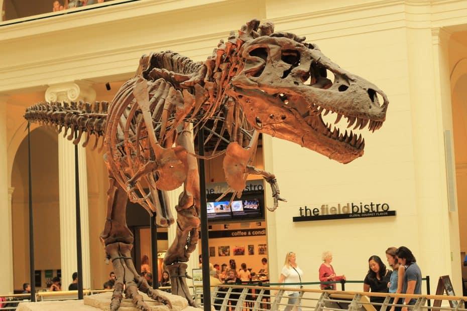 Precio Entradas Museo Field - The Field Museum of Natural History