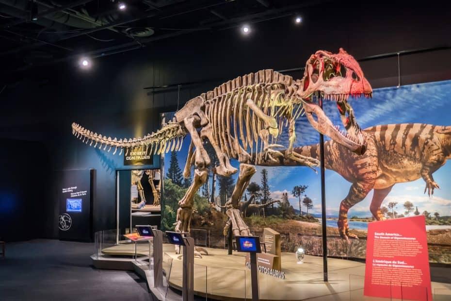 Museo Perot de Naturaleza y Ciencia